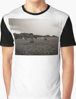 Hospital Cemetery #2 Graphic T-Shirt