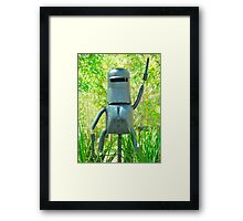 Stand and Deliver # 11 Framed Print