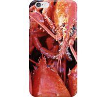 Lobster iPhone Case/Skin
