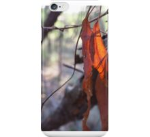 bush light iPhone Case/Skin