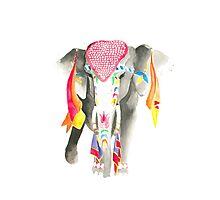 Indie Elephant Photographic Print