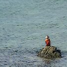 Angler on a Rock by Werner Padarin