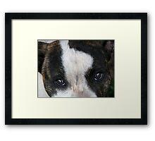 Pit Eyes Framed Print
