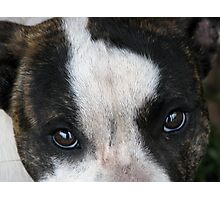 Pit Eyes Photographic Print