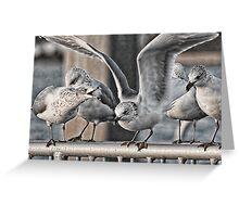 Birds On A Rail Greeting Card