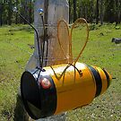 Buzzy Bee Box by Penny Smith