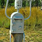 Metal Man Mailbox # 7 by Penny Smith