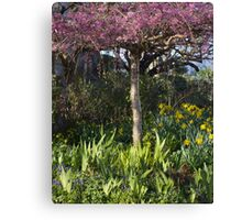 Cherry blossoms and daffodil blooms Canvas Print