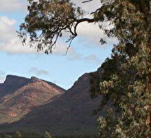 Gumtree & Wilpena Pound, Flinders Ranges, Australia Sticker