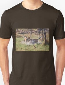 Bengal Tigers Sparring Unisex T-Shirt