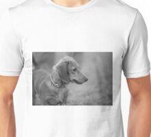 Alfie the Dachshund Unisex T-Shirt