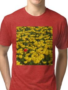 Yellow Tulips and a Red One Tri-blend T-Shirt