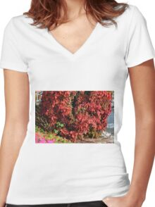 Beautiful colorful bush with red leaves. Women's Fitted V-Neck T-Shirt