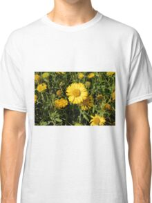 Yellow flowers in the grass. Classic T-Shirt