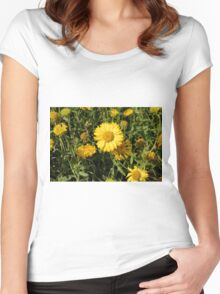 Yellow flowers in the grass. Women's Fitted Scoop T-Shirt