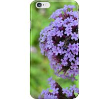Macro on purple spring flowers. iPhone Case/Skin