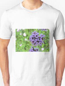 Macro on purple spring flowers. Unisex T-Shirt