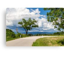 lonely tree on a country road Canvas Print
