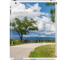 lonely tree on a country road iPad Case/Skin