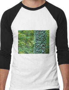 Ivy and Leaves Men's Baseball ¾ T-Shirt