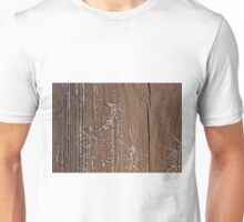 Frost on Shed Door Unisex T-Shirt