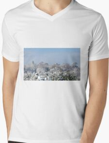 Ashurst Wood Snow Mens V-Neck T-Shirt