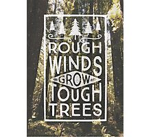 TOUGH TREES Photographic Print