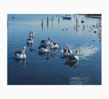 *Pelicans at Werribee South Beach - Vic. Aust.* One Piece - Long Sleeve
