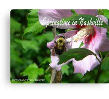 Springtime in Nashville Canvas Print