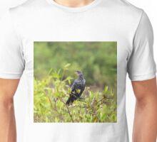 Long-tailed Cormorant Unisex T-Shirt