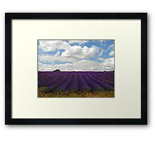 Lavender Landscape (Version 2) Framed Print