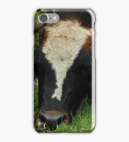 Bull on a Farm iPhone Case/Skin