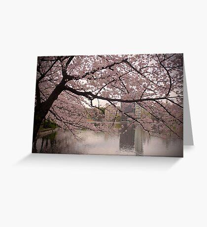 Sakura Blossoms Greeting Card