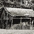 """""""Old Timer's Barn (B&W)""""... prints and products by © Bob Hall"""