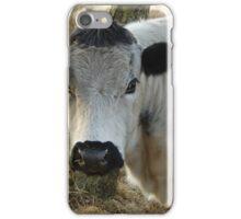 White Cow Portrait iPhone Case/Skin