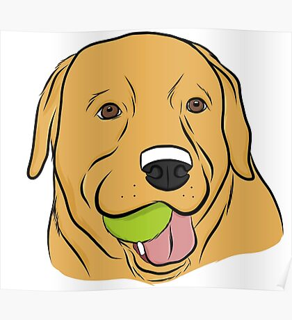 Yellow Lab with Ball Poster