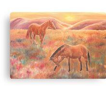 Impressions at sunset Canvas Print