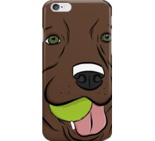 Chocolate Lab with Ball  iPhone Case/Skin