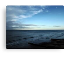 A Silken Sea Canvas Print