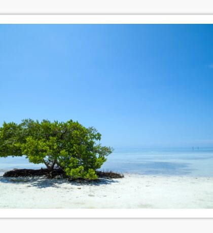 FLORIDA KEYS Lonely Tree Sticker