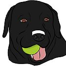 Black Lab with Ball  by rmcbuckeye