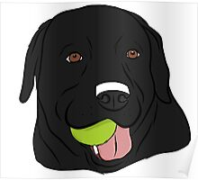 Black Lab with Ball  Poster