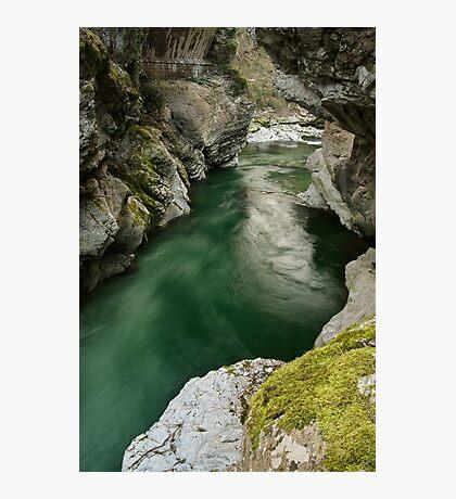 Green water under the bridge Photographic Print