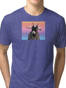 Baby goat on a rainbow background Tri-blend T-Shirt