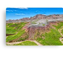 Winding Dry River Canvas Print