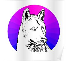 Wolf - Blue & Purple Poster
