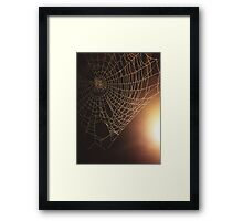 Spiders Not Included Framed Print