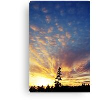 Sunset one Canvas Print