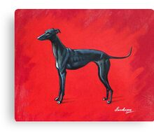Black Greyhound Canvas Print