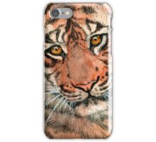 Tiger portrait 884 iPhone Case/Skin